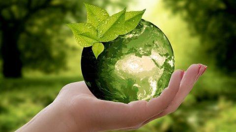 Alternativa verde pentru fluidele de proces