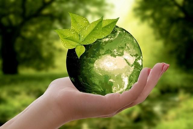 Mediul inconjuratori si reciclatul