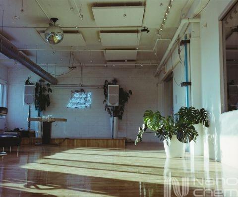 Interior cu pardoseli poliurea si plante